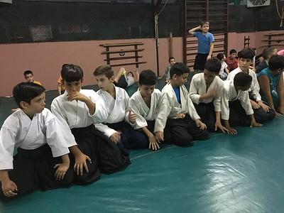 Cuba Aikido -