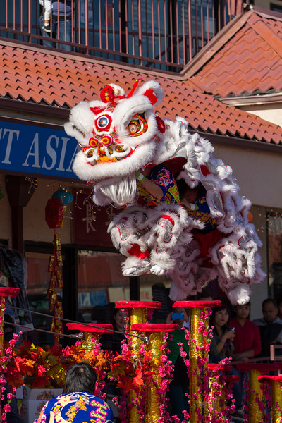 Pre Chinese New Year 2013 (7 of 24).jpg