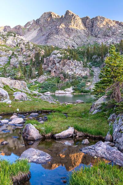 Alpine tarn reflecting the mountains near Fancy Pass