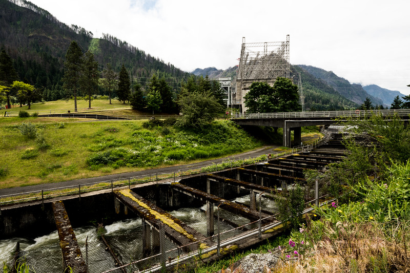 Bonneville Dam-2.jpg