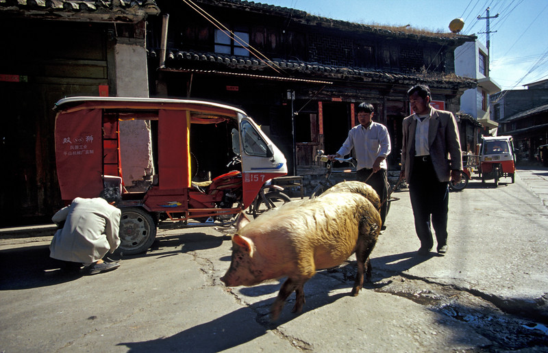 Street Scene, Chinese Countryside