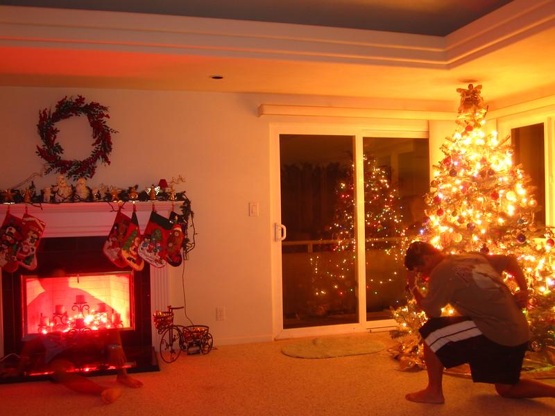 Hawaii - Playing with Light Christmas-14.JPG