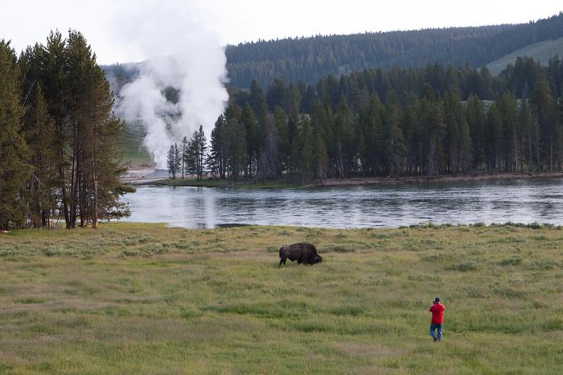 Yellowstone-2008-003.jpg