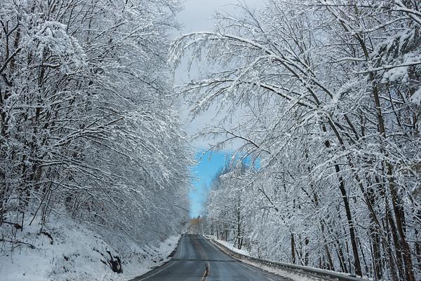 Beautiful Snow On Everything