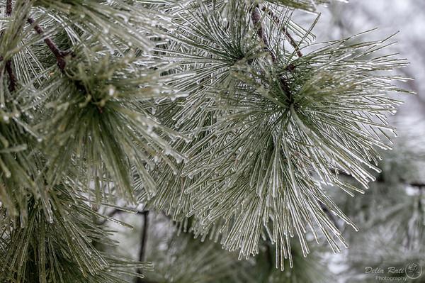 Study of Ice/Snow Storm