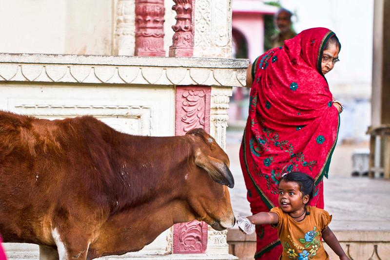 India_127.JPG