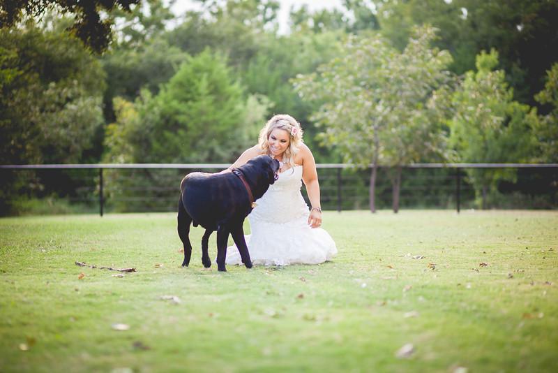 2014 09 14 Waddle Wedding-884.jpg
