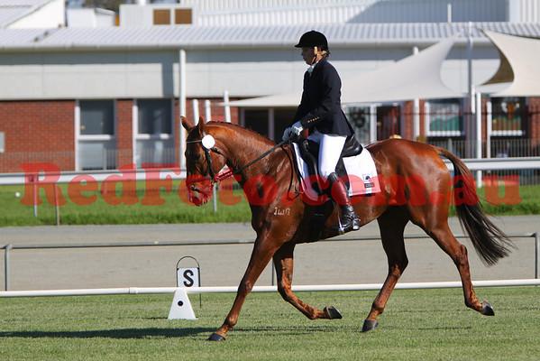2009 05 03 Narrogin ODE Dressage All Arenas 14:35 till finish
