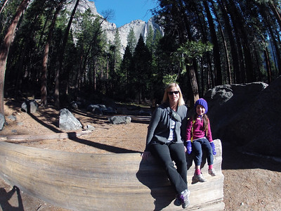 Yosemite National Park - March 21-23, 2014