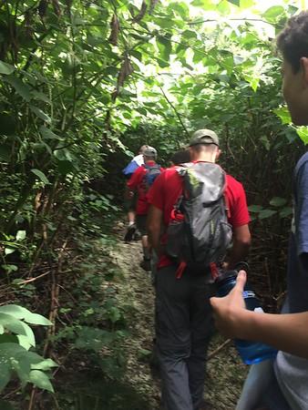 Stewart Forest Hike