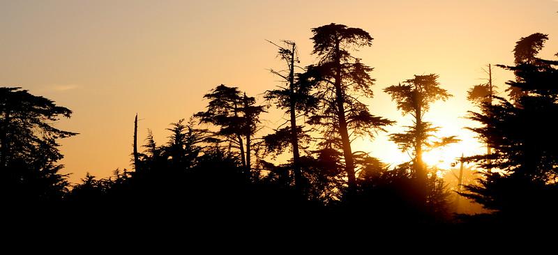 4087 Sunset.jpg