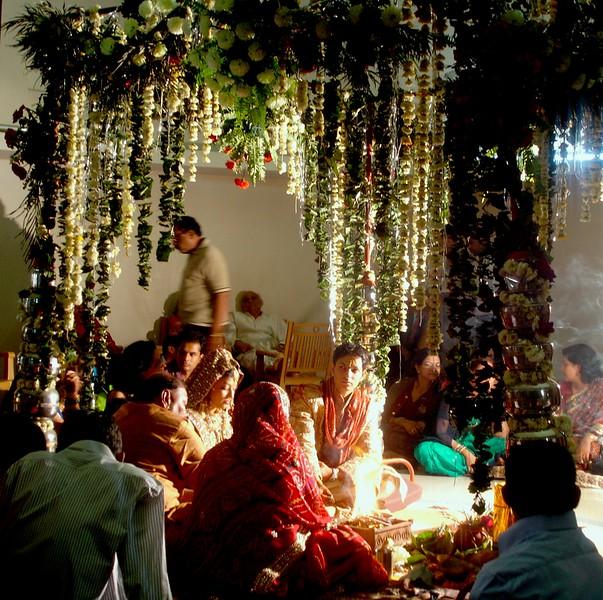 Ruchi's cam pics - India Feb 09 146.jpg