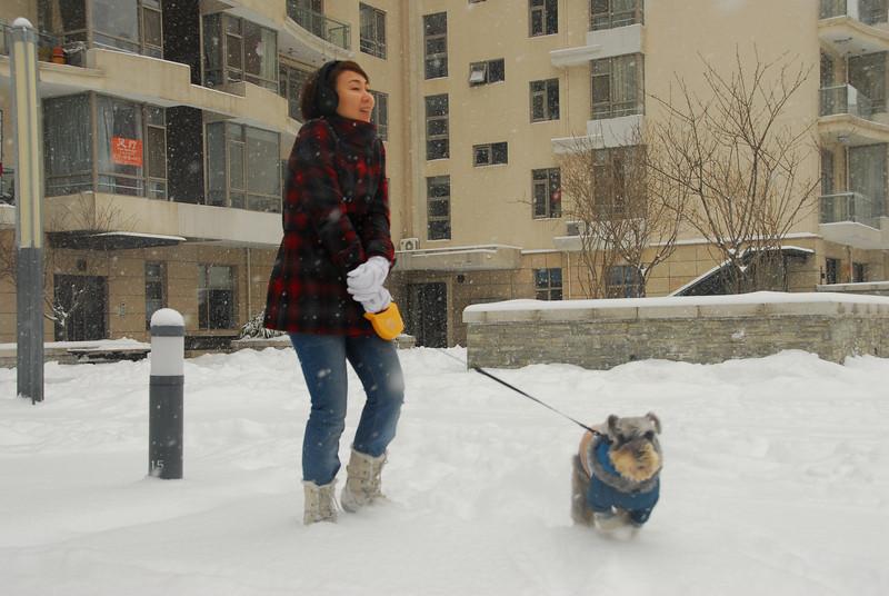 [20100103] 1st 2010 Snow in Beijing (13).JPG
