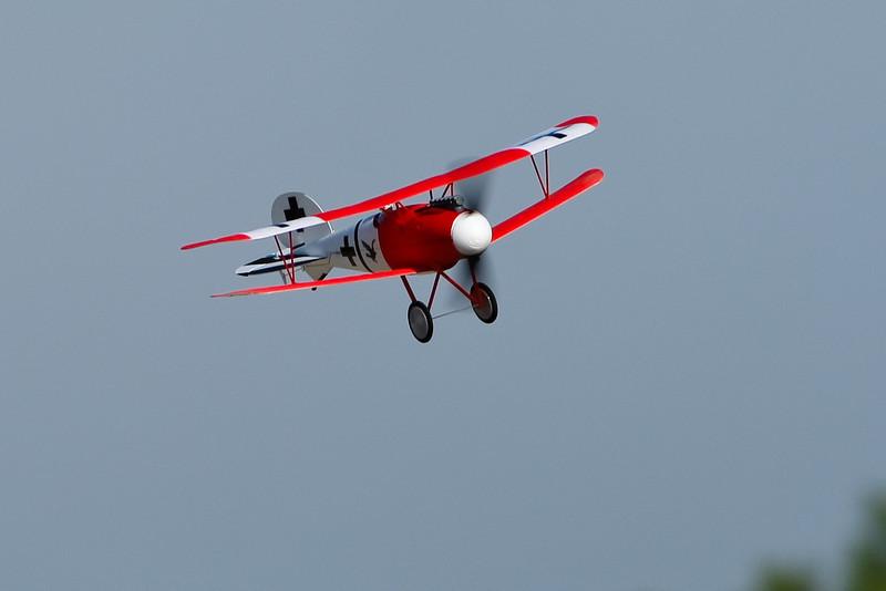 FZ_AlbatrosDV_13.jpg