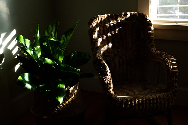 Weekly Assignment 1: Light Play Images