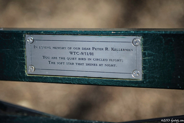 Central Park - Benches
