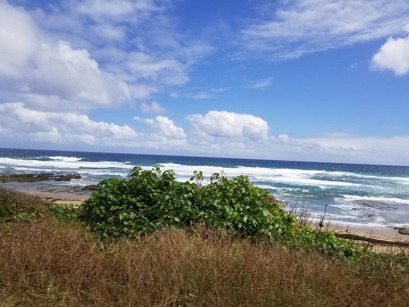 Barbados (18).jpg