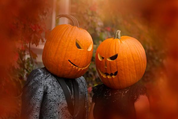 Fogel  Pumpkin session 2021
