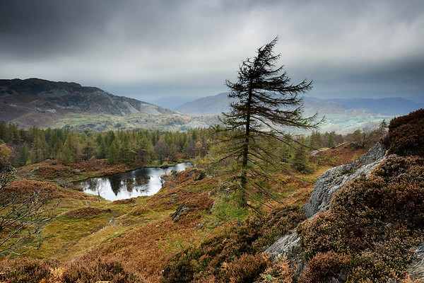 Hodge Close and Holme Fell