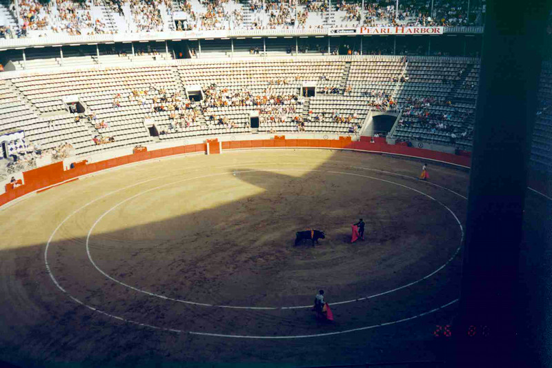Bull Fight 3.jpg