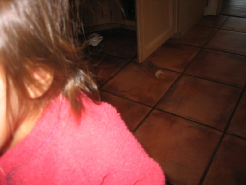 Christmas 2006 & Other 035.JPG