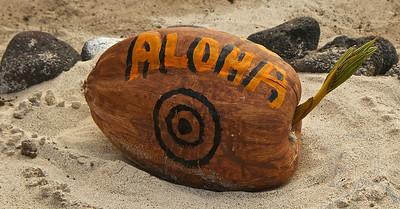 Hawaii Big Island  2013