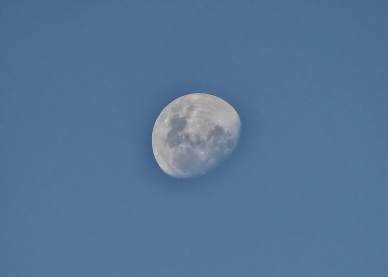 BOV_1067-7x5-Moon.jpg