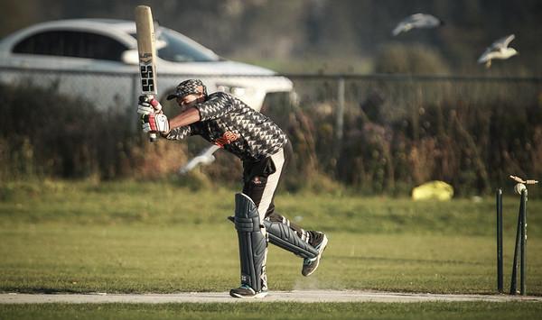 Cricket 2017