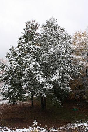 Oct Snow