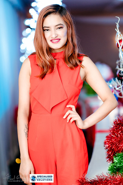 Specialised Solutions Xmas Party 2018 - Web (96 of 315)_final.jpg