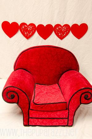 Valentine 2013 WEB