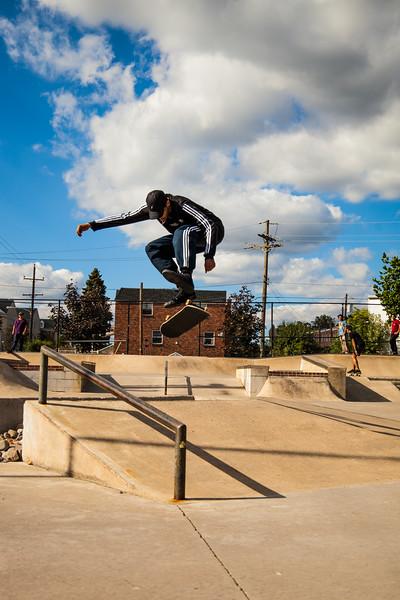 Bgee Skate Ambler