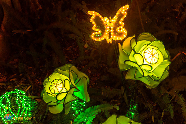 Selby Lights In Bloom