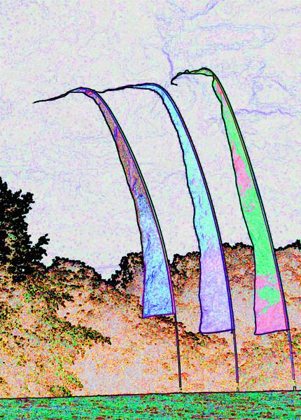 Big Garden Flags~1549-2ge.