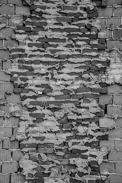 Exposed Block Wall Bricks 2