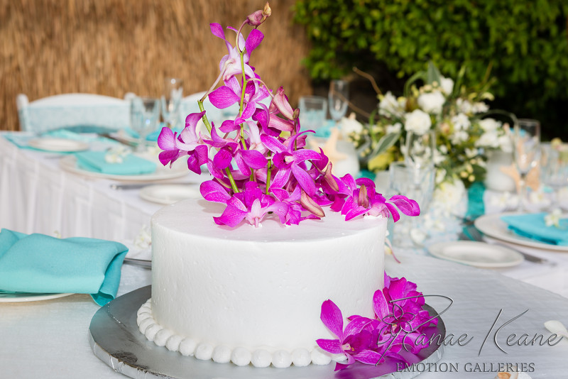 008__Ranae_Keane_Hawaii_Destination_Wedding_Photographer_Ranae_Keane_www.EmotionGalleries.com__140505.jpg