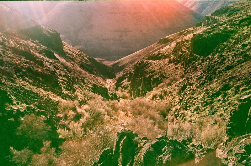 Cottonwood Canyon - 2021/01/17