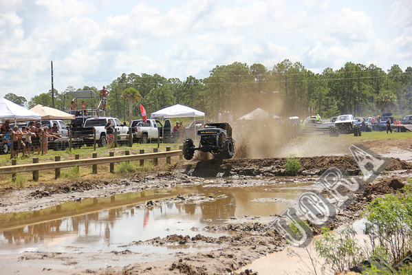 Mega Trucks and other Mud/Dirt Racing