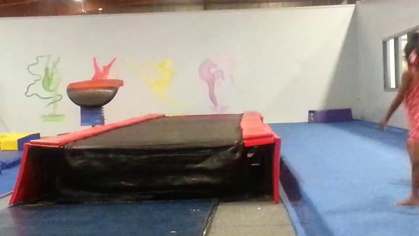 Wright Sister Gymnastics