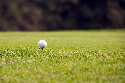 CSS Golfturnier 2010