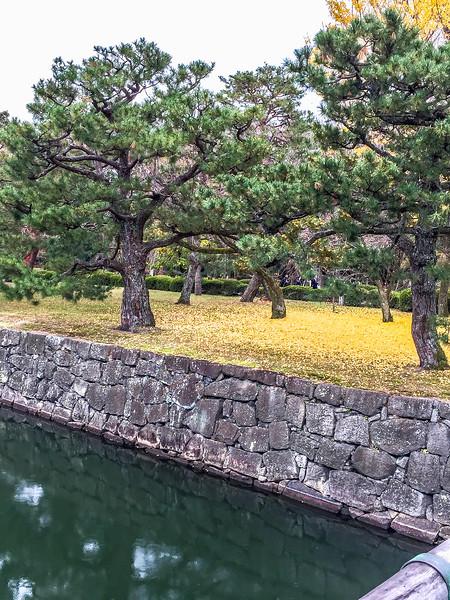 Kyoto12062018_315.jpg
