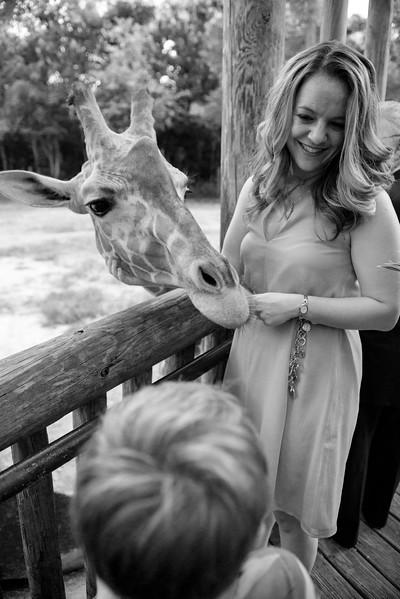2017-09-02 - Wedding - Doreen and Brad 5725A.jpg