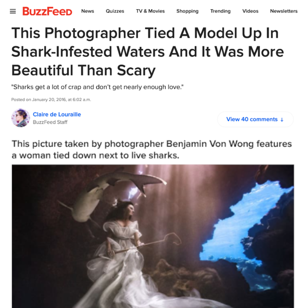 160120_BuzzFeed_ Sharkshepherd_19.png