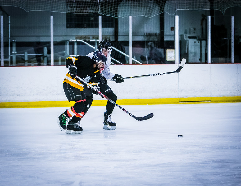 Bruins2-205.jpg