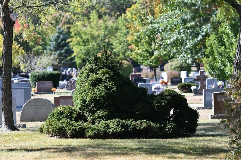St-Joseph-Cemetery-Oct2019-130.jpg