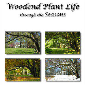 Woodend Plant Life Book
