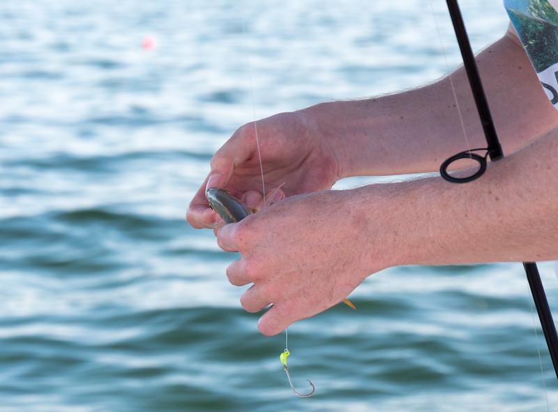florida bay fishing-52