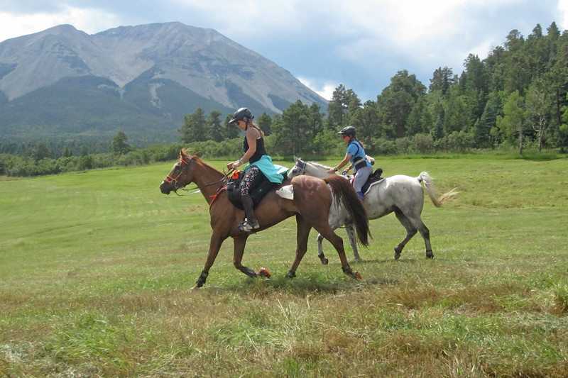 The 100-mile AERC National Championship in Colorado