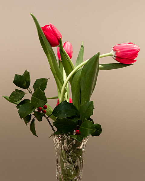 2020-Week 12 - Tulips Arrangement - a Reminder of Spring to Come.jpg