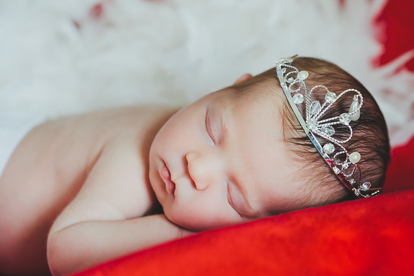 NEWBORN 2014 |  Sofia + Family